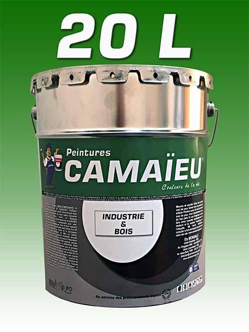 camaieu-wp-emballages-_0020_20L-peinture-industrielle-VERT