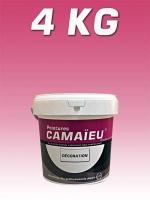 camaieu-wp-emballages-_0007_04KG-decoration-MAUVE