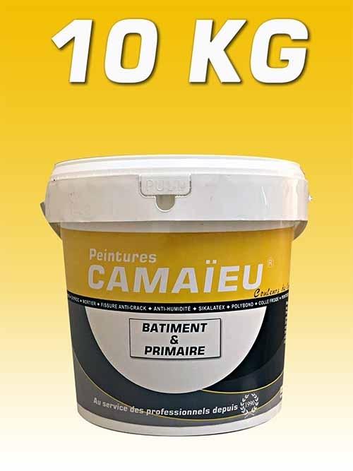 camaieu-wp-emballages-_0009_10KG-primaire-a-eau-JAUNE