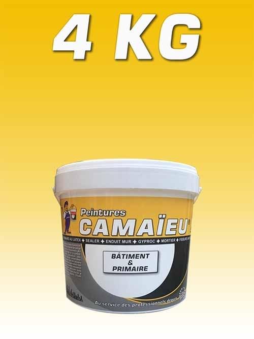 camaieu-wp-emballages-_0010_04KG-primaire-a-eau-JAUNE