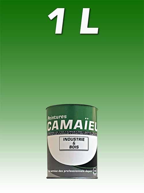 camaieu-wp-emballages-_0023_01L-peinture-industrielle-VERT