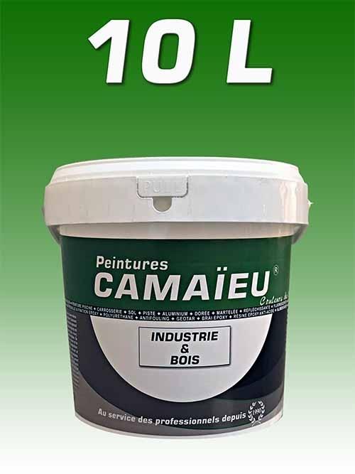 camaieu-wp-emballages-_0021_10L-peinture-industrielle-VERT